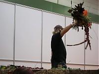 Pogledajte slike sa Hortus Hungaricus 2010 u našoj galeriji